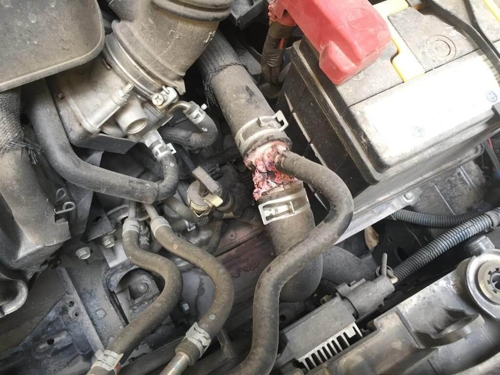 Thường xuyên kiểm tra ống dẫn nước làm mát để đảm bảo không bị rò rỉ